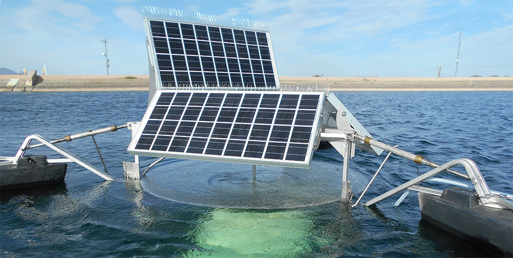 picture of solarbee in water